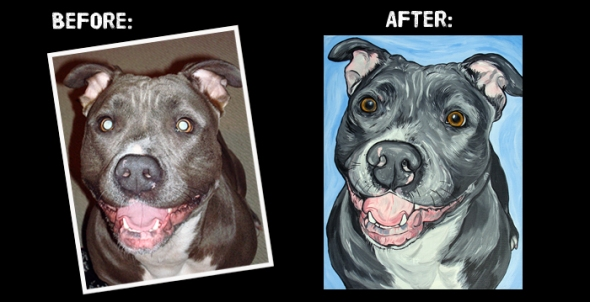 pit bull before and after