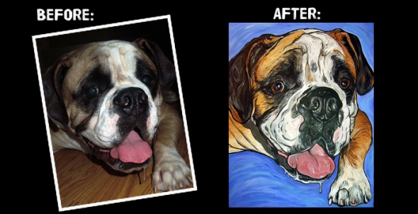 English Bulldog before and after