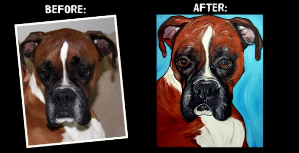 Oscar the Boxer Before and After
